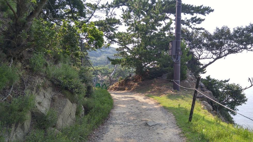 山道のようになっている散策道