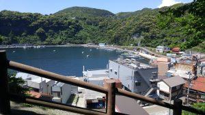 石段から眺める波浮の港