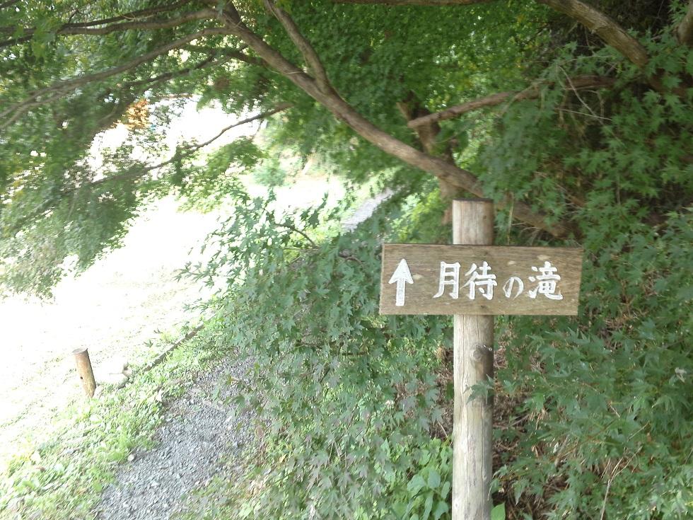 月待ちの滝へ続く小道