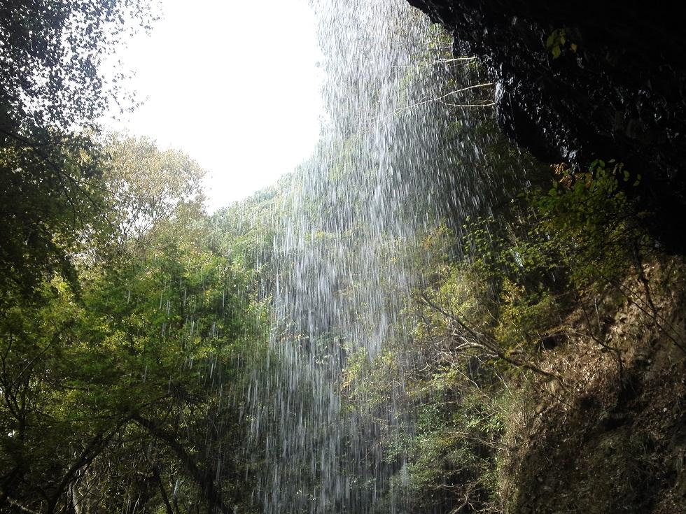降り注ぐ滝の水