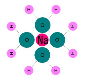 ナトリウム イオン