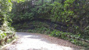 地層になっている崖