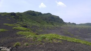 緑で覆われた山