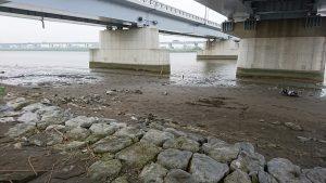 干潮時の小松川橋