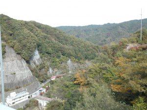 竜神大吊橋から眺める森の風景